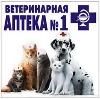 Ветеринарные аптеки в Кёнигсберге